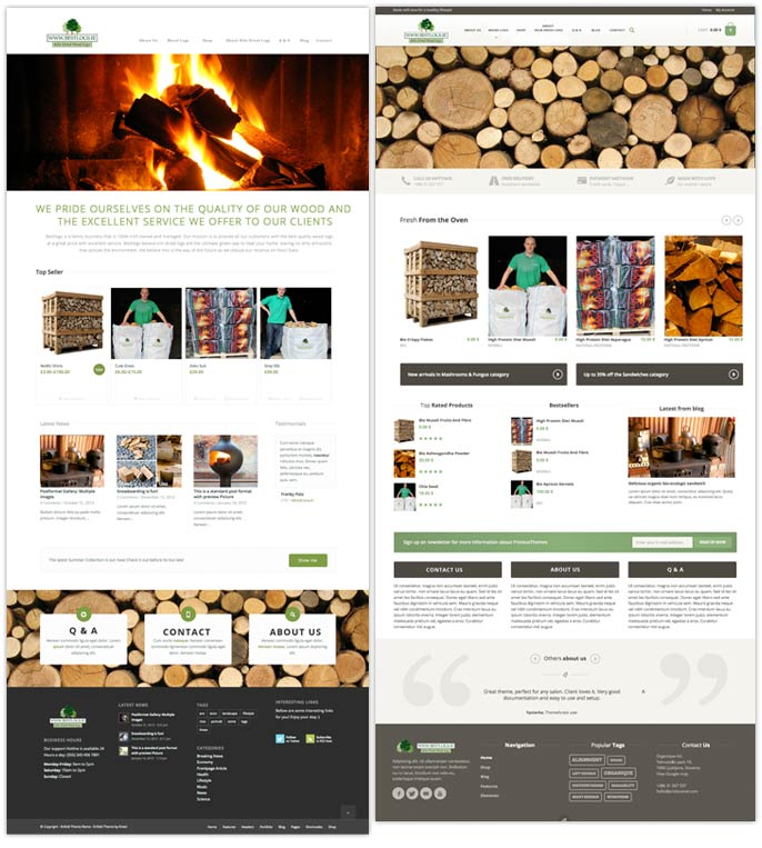Web Design - Art Direction - Mock-ups - Bestlogs