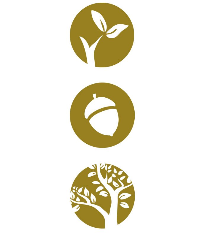 Logo Design Frank Devitt Icons