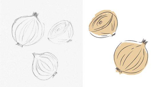 Tea Towel Design - Onion Illustration