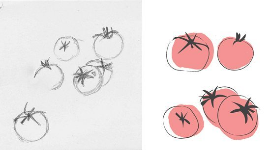 Tea Towel Design - Tomato Illustration