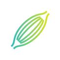 Bespoke Icon Design Services Ireland